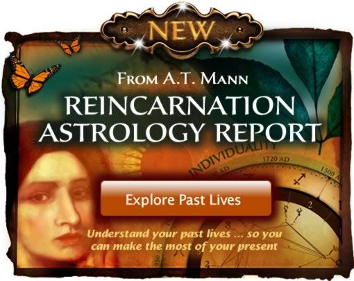 Reincarnation Report tarot.com Mann