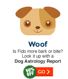 Dog Astrology Profile