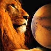 The Lion's Last Roar