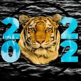 black water tiger