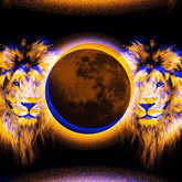 solar eclipse and leo lions