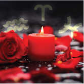 romantic rose and candle