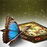 fenestra deck butterfly tarot