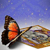 butterfly on tarot cards