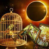 Bird in Cage, Solar Eclipse