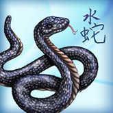 2013 Chinese Horoscopes | Tarot.com