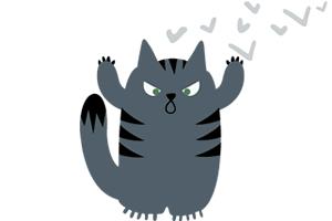 scorpio cat