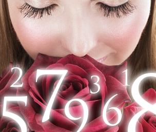 Valentine's Day Numerology