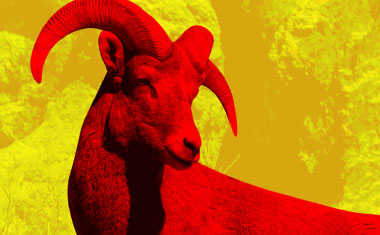 Your Aries Season Horoscope