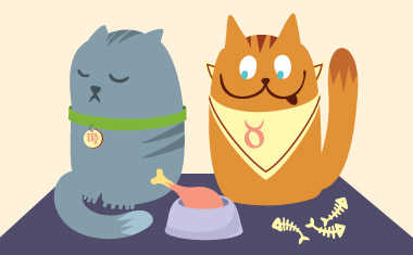 Cat Astrology: Traits by Zodiac Sign