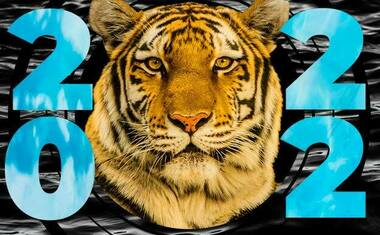 Lunar New Year 2022: Year of the Black Water Tiger
