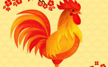 2017 Year of the Rooster Horoscopes