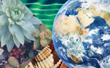 Reveal the Numerology Behind Earth Day