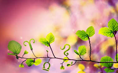 spring green leaves with zodiac sign symbols
