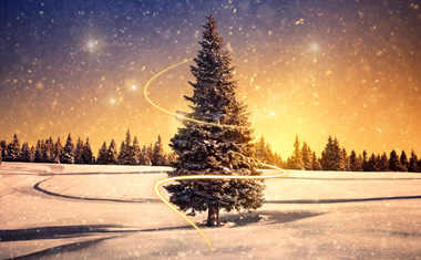 Transformational Holidays