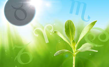 Weekly Astrology: April 27 to May 3, 2014
