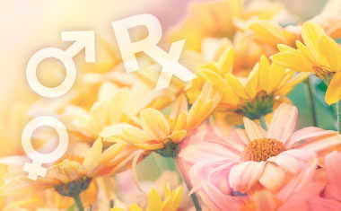 Spring Love Horoscopes 2016