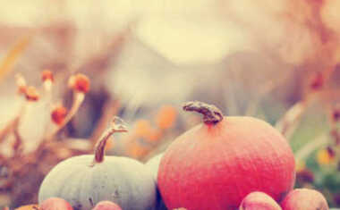 Thanksgiving Day Astrology