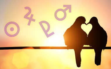 love birds with astrology symbols around