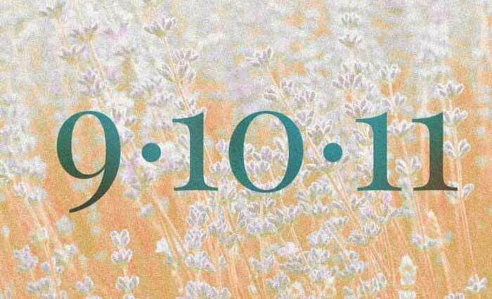 The Numerology of 9/10/11