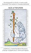 Ace of Wands Tarot card in Apprentice deck