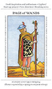 Page of Wands Tarot card in Apprentice deck