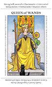 Queen of Wands Tarot card in Apprentice deck