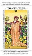 Nine of Pentacles Tarot card in Apprentice deck