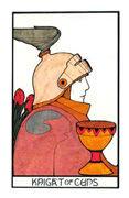Knight of Cups Tarot card in Aquarian deck