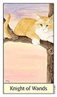cats-eye - Knight of Wands