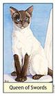 cats-eye - Queen of Swords