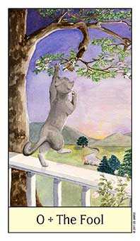 The Fool Tarot Card - Cat's Eye Tarot Deck