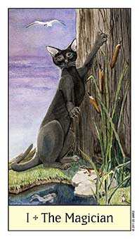 The Magus Tarot Card - Cat's Eye Tarot Deck