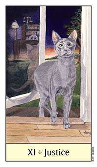 Justice Tarot Card - Cat's Eye Tarot Deck