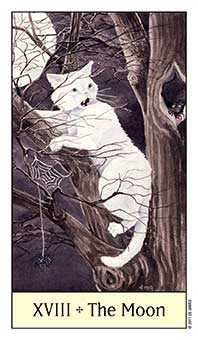 The Moon Tarot Card - Cat's Eye Tarot Deck