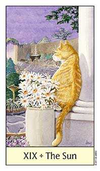 The Sun Tarot Card - Cat's Eye Tarot Deck