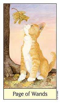 Valet of Batons Tarot Card - Cat's Eye Tarot Deck
