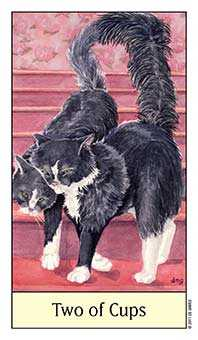 Two of Hearts Tarot Card - Cat's Eye Tarot Deck