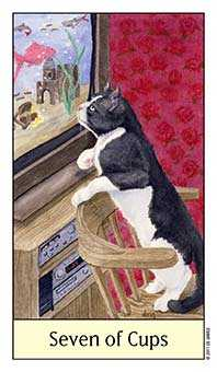 Seven of Hearts Tarot Card - Cat's Eye Tarot Deck