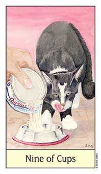 Nine of Bowls Tarot Card - Cat's Eye Tarot Deck
