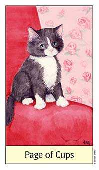 Page of Hearts Tarot Card - Cat's Eye Tarot Deck