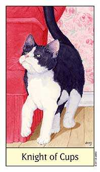 Cavalier of Cups Tarot Card - Cat's Eye Tarot Deck