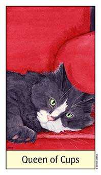 Queen of Hearts Tarot Card - Cat's Eye Tarot Deck