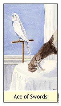 Ace of Wind Tarot Card - Cat's Eye Tarot Deck