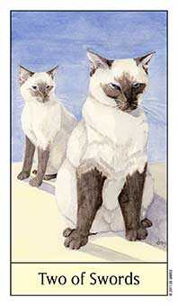 Two of Arrows Tarot Card - Cat's Eye Tarot Deck