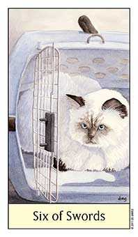 Six of Arrows Tarot Card - Cat's Eye Tarot Deck