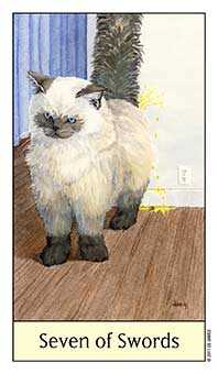 Seven of Swords Tarot Card - Cat's Eye Tarot Deck