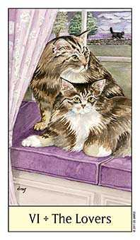 The Lovers Tarot Card - Cat's Eye Tarot Deck