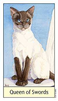 Queen of Swords Tarot Card - Cat's Eye Tarot Deck