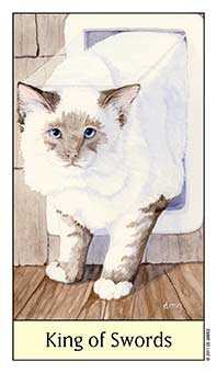 Father of Wind Tarot Card - Cat's Eye Tarot Deck